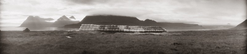 Silage 1