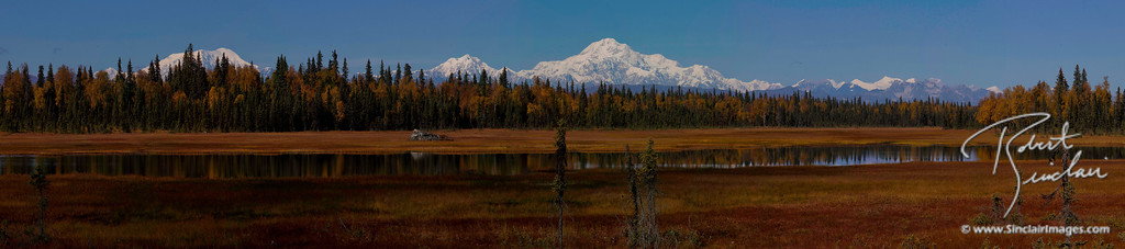 Mount McKinley (Denali) overlooking the autumn tundra.