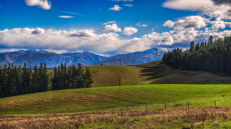 Pastures, New Zealand