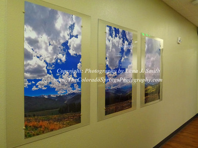 This panoramic image was cut into 3 parts to decorate a large wall in the dental office.
