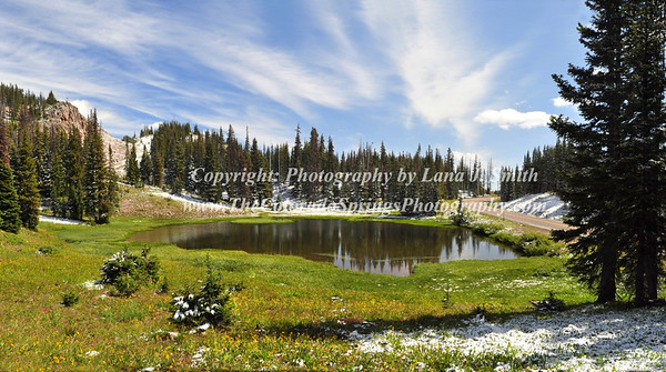 Panorama Snowy Range 2a b