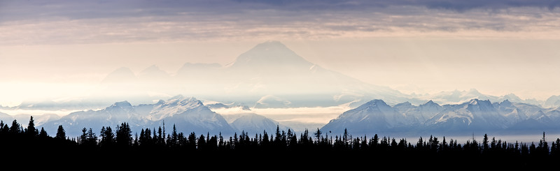 Panorama of Mt. Redoubt as seen from high above Homer.  Note the eagle flying just above the trees mid foreground.