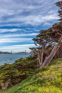 Lands End - San Francisco