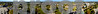 fall panoramatrim