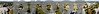 Capitol PanoramaFall