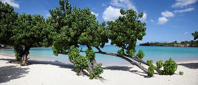 Rum Runner Beach, Grenada Caribbean