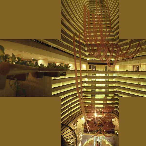 This is composite of  vertical and horizontal  pictures taken with Horizon 202. It is the Marriott Marquis hotel 40 story atrium. It is almost impossible to show the scale in one shot.
