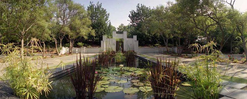 Lilly Pond at Birmingham Botanical Garden
