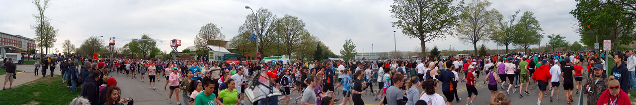 p74-1-p74-8half.jpg  Illinois Marathon 2011 Starting Line