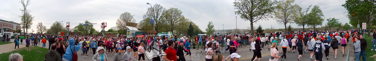 p83-1-p83-8half.jpg  Illinois Marathon 2011 Starting Line