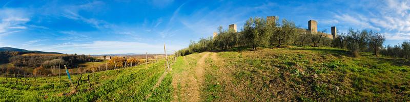 Monteriggioni Vineyards #2