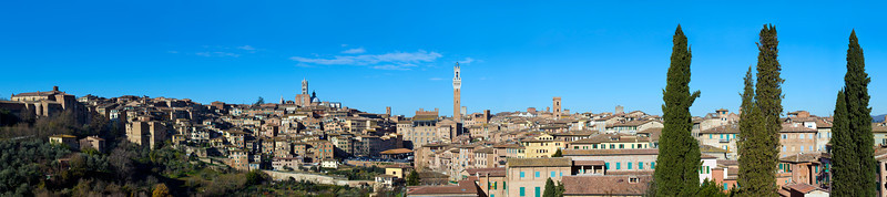 Siena Panoramic