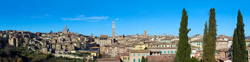 Siena Panoramic #2