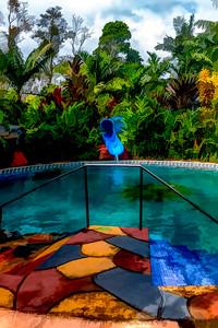 Jungle Pool Slide-