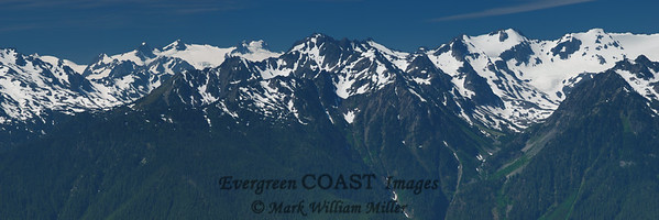 The Northern Olympic Mountain range from Hurricane Ridge