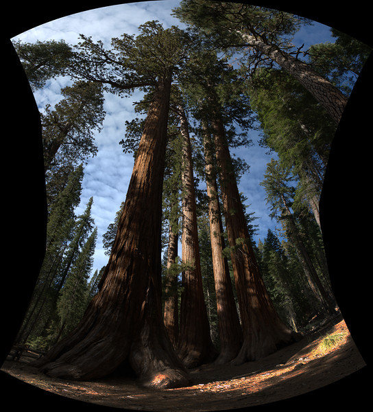 Bachelor and Three Graces<br /> Yosemite National Park, California<br /> (Stitched Panorama)