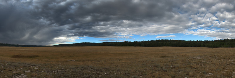 Gathering Storm<br /> Kaibab Plateau<br /> (Stitched Panorama)