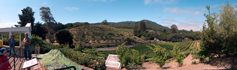 Bensiger Winery, Glen Ellen, California