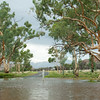 Jay Creek After Rain
