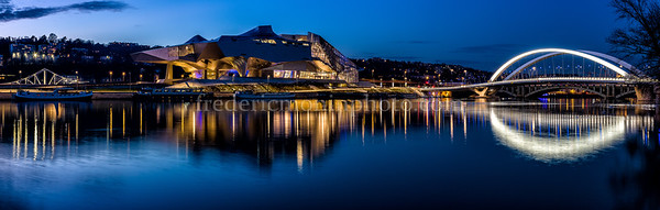 Confluence at Lyon by night