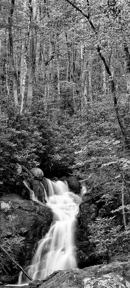 A vertical panorama of Mouse Creek Falls as it flows to Big Creek.