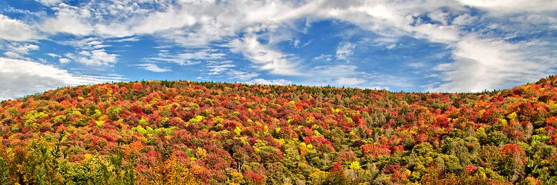 Fall on the Highland Scenic