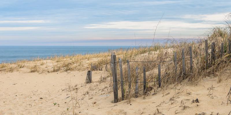 Beach 8590
