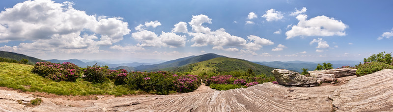 Roan Highlands Panorama