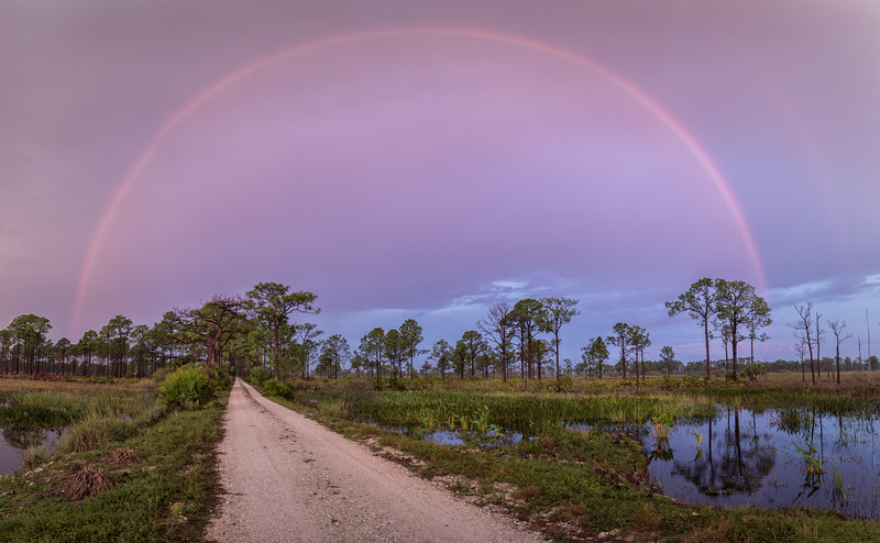 Rainbow over Babcock Wildlife Management Area, Punta Gorda, Florida