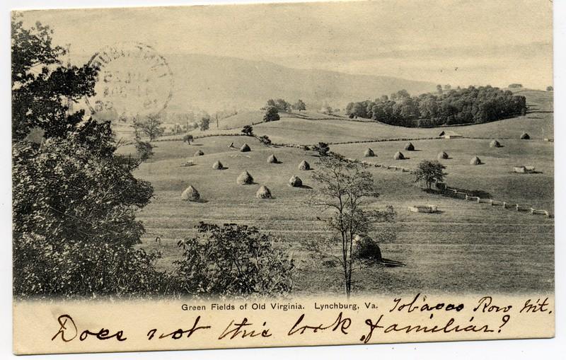 Postcard of Green Fields of Old Virginia (03248)