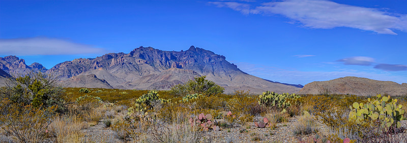 Panorama of desert area in Big Bend National Park, Texas