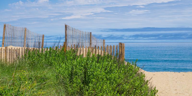 Fence 1549