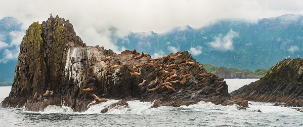 Alaska08-1154-Pano