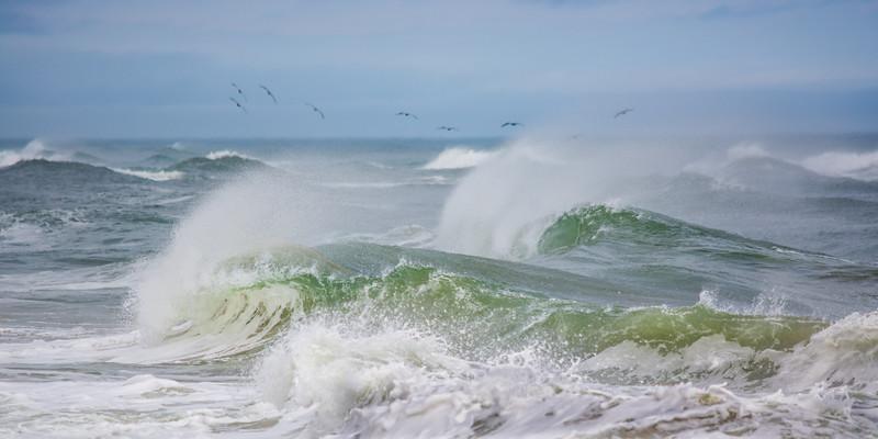 Ocean 8383