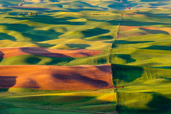 Palouse Waves