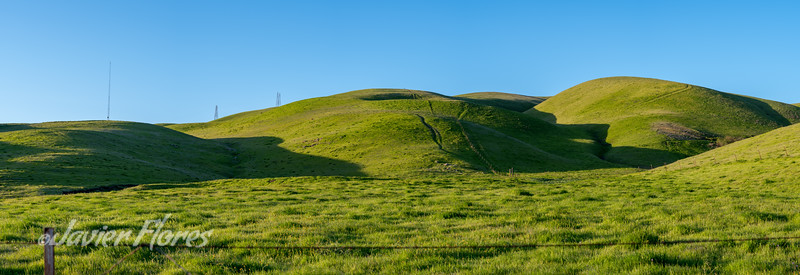 Altamont Pass Rolling Hills