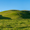 Altamont Pass Rolling Hills