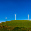 Altamont Pass and Wind Turbines