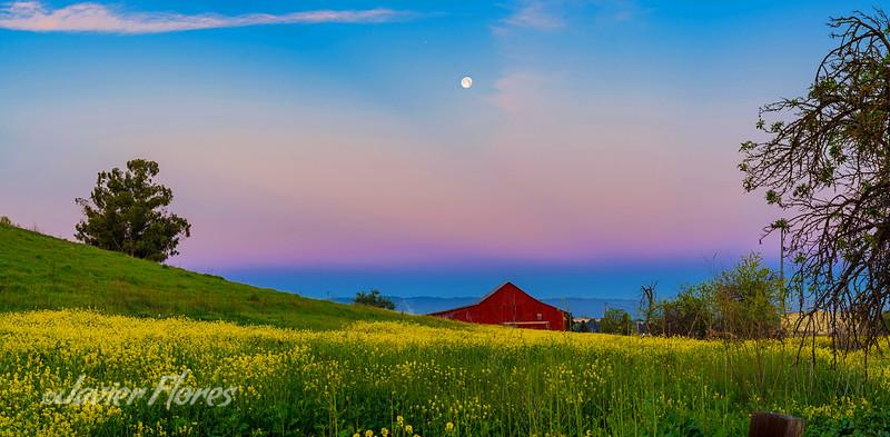 Redbarn with Moon