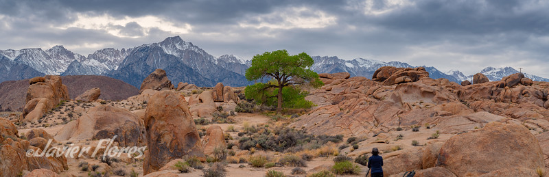 Lone Photographer Alabama Hills