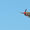 P40 Warhawk Panoramic