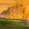 Panoramic Surf crashing at Sunset
