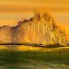 Panoramic of Surf