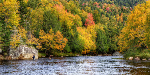 AUS 01 - Ausable River Fishiing - Fall