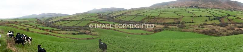Panoramic Photo File
