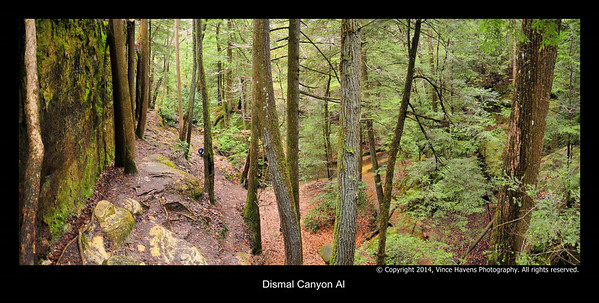 Dismal Canyon Al