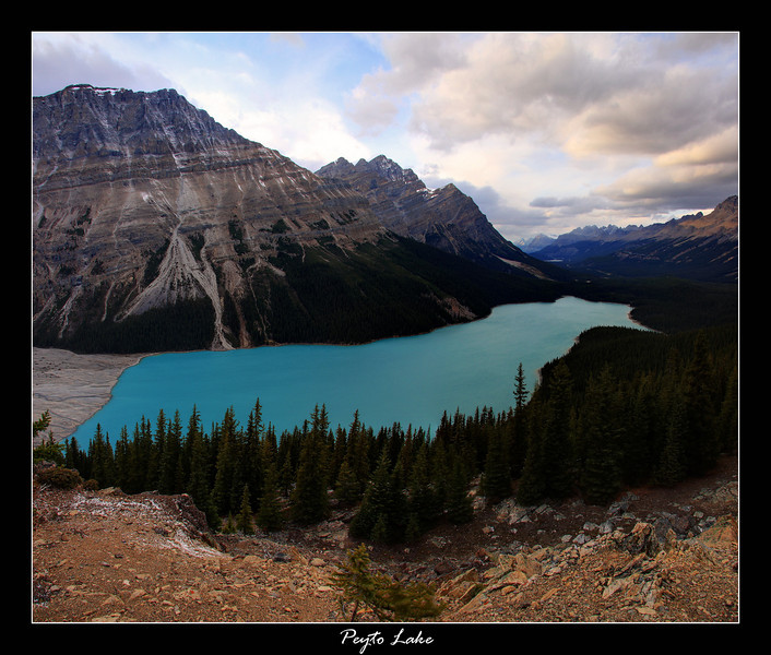 Peyto Lake, located along the Icefields Parkway, Banff Ab.