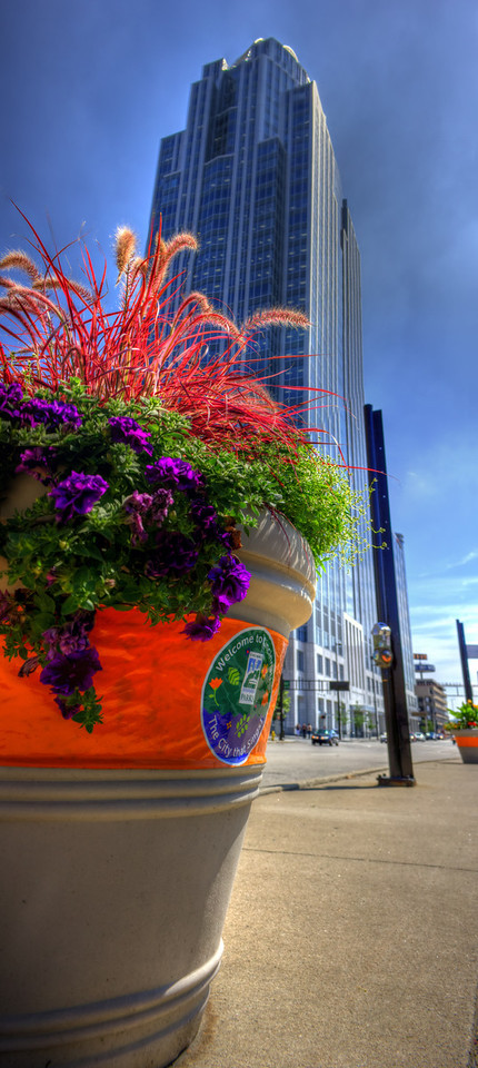 Welcome to the Great American City<br /> (June 22) One of the new flower pots that the city of Cincinnati has installed for beautifying the city for the World Choir Games.  2 shot panoramic.