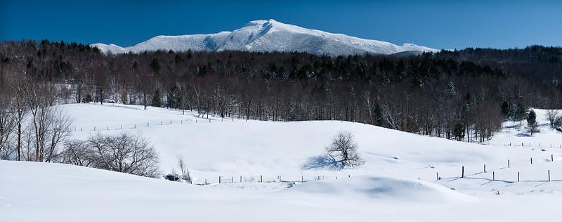 B&W Snowy Fields Panoramic