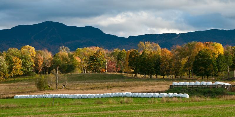 West Farm Panoramic